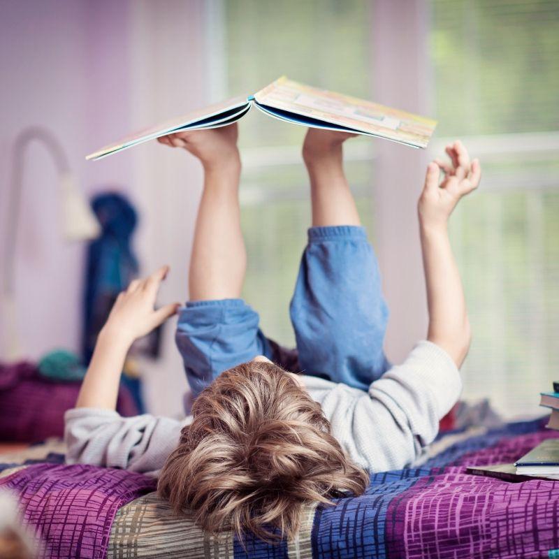 The Disciplines: Literature Webinar
